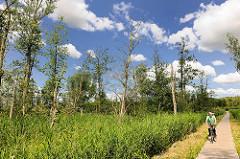 Naturschutzgebiet Brenner Moor in Bad Oldesloe / Kreis Stormarn. Flachmoor imTalraum der Trave mit den größten binnenländischen Salzquellen Schleswig Holsteins. Holzsteg durch das Naturschutzgebiet - Fahrradfahrer.