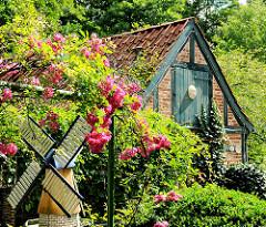 Fachwerkkate auf der Schlossinsel in Barmstedt, Kreis Pinneberg - blühende Rosen.