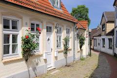 Wohnhäuser am Hafen von Schleswig - Rosenstock mit blühenden roten Rosen - Kopfsteinpflaster.