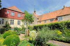 Bibelgarten des Bibelzentrums St. Johanniskloster Schleswig - gezeigt werden biblische Pflanzen, die im norddeutschen Klima wachsen können.