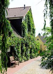 Wohnhaus mit Efeu bewachsen - Seitenstrasse in der Stadt Schleswig.