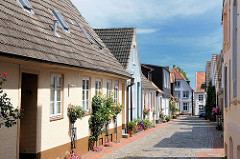 Schmale Wohnstrasse mit kleinen Häusern - Rosen blühen am Strassenrand - Bilder aus der Stadt Schleswig.
