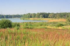 Blick über Teile der mit neuer Vegetation bewachsene Kiesgrube in Tangstedt - im Hintergrund der See, an der sich die Badestelle Tangstedt befindet.