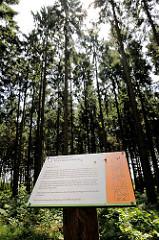 Stiftungswald im Tangstedter Forst - Stiftung Naturschutz; natürliche Prozesse laufen ungestört ab.