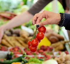 Stand mit Biogemüse - Bauernmarkt Biogut Wulksfelde. Eine Dame hat Strauchtomaten ausgewählt und reicht diese zum Abwiegen.