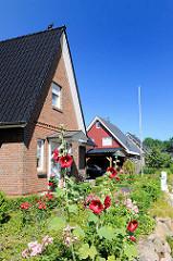 Neubaugebiet Eichholzkoppel - Gemeinde Tangstedt / Stormarn - Einzelhäuser, Stockrosen am Strassenrand.