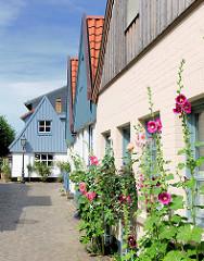 Fischerhäuser mit Holzfassade im Fischerviertel Holm in Schleswig - Stockrosen bühen am Strassenrand.