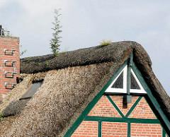Reetdachkate - Wohnhaus mit Reet gedeckt, Fachwerkhaus - Norderstedt / Garstedt.