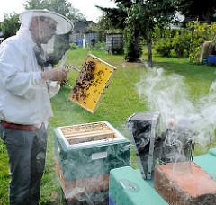 Imker bei der Arbeit - Überprüfung von Honigwaben. Der Imker trägt zum Schutz eine Imkerbluse und einen Imkerhut mit Schleier. Im Vordergrund ein abgestellter rauchender Smoker; der Rauch stellt die Bienen ruhig und erleichtert die Arbeit am Bienenst