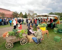 Herbstdekoration - Gemüseernte, Bollerwagen dekoriert - Bauernmarkt auf dem Biohof in Wulksfelde, Gemeinde TAngstedt.