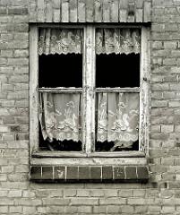 Marodes Holzfenster, die Farbe blättert ab - Spitzengardinen mit Schwanmotiv - Abrisshaus in der Hansestadt Wismar.