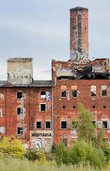 Ruine der ehem. Malzfabrik Wismaria in Wismar, gegründet 1899 - der Gebäudekomplex steht als historische Industriearchitketur unter Denkmalschutz.