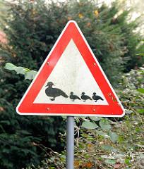 Schild Entenwanderung - Achtung Enten mit Küken beim Mühlensee in Grosshansdorf.