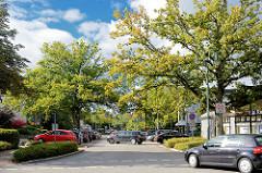 Blick in den Ahrensfelder Weg in Schmalenbeck, Gemeinde Großhansdorf; Strassenbäume, blauer Himmel - weisse Wolken.