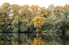 Herbstlich gefärbte Bäume am Mühlenteich in Grosshansdorf; Herbstfarben.