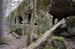Zerstörtes Gebäude auf dem Areal der Wolfsschanze - verfallene Ziegelmauer, Baumstämme.