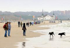 Spaziergänger mit Hunden am Strand von Heringsdorf, Usedom; Regentag - im Hintergrund  das Gebäude der Seebrücke Ahlbeck.