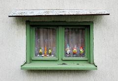 Grünes Holzfenster mit Gardinen - Gartenzwerge auf der Fensterbank - Fotos aus Wolgast.