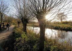 Fussweg am Ufer der Trave - Kopfweiden am Fluss in Bad Segeberg. Die Sonne scheint durch die Zweige einer kahlen Weide - Gegenlichtaufnahme.