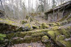 Gesprengter und zusammengesunkener Bunker - mit Moos bewachsene Betonwände; Wolfsschanze  /  Wilczy Szaniec. Bäume und Sträucher wachsen aus den Trümmern der Vergangenheit - mit Moos bedeckte Steinbrocken.