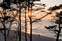 Sonnenuntergang zwischen Kiefern an der Ostsee - Badeort Leba, Polen.