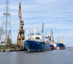 Frachtschiffe und Kräne im Hafen von Danzig / Gdansk, Polen.