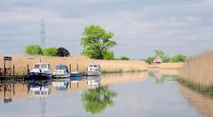 Fluss ESTE bei Buxtehude - Schilf am Ufer des Flusses, der zur Elbe fliesst - Sportboote liegen an einem Schlengel.