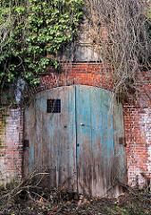 Alte Garage - Holztür; Fassade mit Rankpflanzen überwuchert; Fotos aus Uetersen, Kreis Pinneberg.