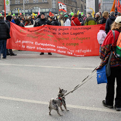 Transparent auf der Demonstration für das Bleiberecht der Lampedusa-Flüchtlinge in Hamburg; kleiner Hund an der Leine.