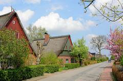 Dorfstrasse mit historischen reetgedeckten Bauernhäusern in Seester, blühende Bäume im Frühling.