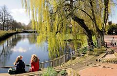 Frühlingstag in der Sonne am Ufer des Stadtsees in Rendsburg - Weide mit jungen Blättern am Seeufer.