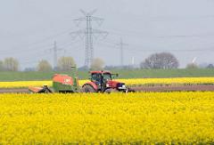 Traktor bei der Feldarbeit zwischen blühenden Rapsfeldern in Seester, Kreis Pinneberg.