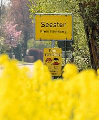 Ortsschild Seester, Kreis Pinneberg - Fahr vorsichtig; blühender Raps.