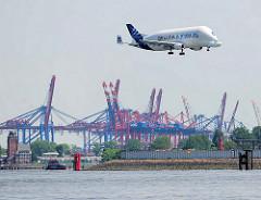 Eine Airbus Beluga im Landeanflug auf den Flughafen in Hamburg Finkenwerder - im Hintergrund die Lotsenstation und Containerkräne im Hamburger Hafengebiet, Stadtteil Waltershof.