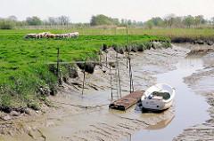 Ebbe in einem Seitengraben der Krückau - ein Ruderboot ist trocken gefallen und liegt im Schlick - Kuhherde auf der Wiese; Bilder aus Neuendorf b. Elmshorn.
