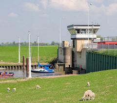 Sperrwerk Pinnau - Schiffe / Sportboote auf dem Fluss; Schafe am Elbdeich.