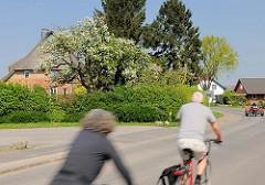 Reetgedecktes Bauernhaus in Haseldorf - blühender Birnbaum - Fahrradfahrer in Fahrt.