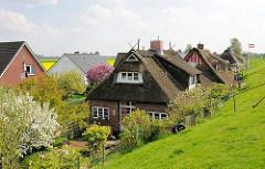 Reetdachhäuser, Bauernhäuser und Neubauten am Deich in der Gemeinde Seestermühe.
