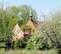 St. Gabrielkirche in Haseldorf zwischen blühenden Apfelbäumen - die Kirche wurde zwischen 1200 und 1250 gebaut - spätromanischer Backsteinbau.