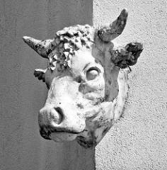 Stuckdekor - Kopf eines Stiers an der Hausfassade eines Metzgers / Schlachters in Eutin.