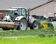 Ein Walzschlepper / Traktor mit Walze legt die Grasmiete auf einem Bauernhof in Kollmar an.