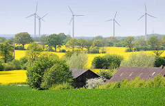 Rapsblüte in der Holsteinischen Schweiz bei Plön; Bäume und Knicks zwischen den Feldern - Windkraftanlagen; Dächer eines Bauernhofs zwischen Bäumen.