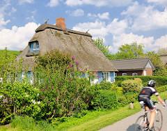 Frühlingsbilder aus Seestermühe - Reedachhaus, Wohnhaus mit blauen Fensterrahmen / Fensterluken; Radfahrer mit Rennrad - blauer Himmel, weisse Wolken.