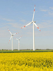 Windkraftanlagen - Rapsblüte, blauer Himmel; Fotos aus Neuenfelde b. Elmshorn.