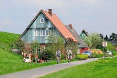 Wohnhaus am Deich in Seestermühe - weiss grüner Giebel / Hausfassade - Radfahrer auf der Deichstrasse.