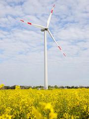 Windkraftanlage - blühender Raps; Bilder aus Neuenfelde b. Elmshorn.