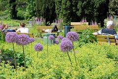 Sommersonne in Hamburg - die Ruhebänke im Botanischen Sondergarten in Wandsbek sind belegt.