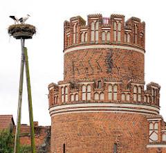 Storchennest und mittelalterlicher Turm der Stadtmauer in der Hansestadt Werben.