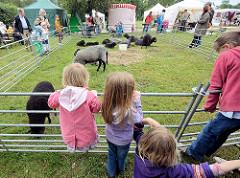Bauernmarkt auf dem Gut Wulksfelde, Gemeinde Tangstedt - Kinder beobachten eine Schafsherde.
