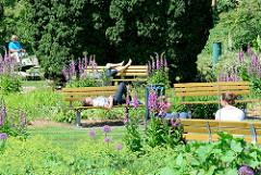 Blühende Pflanzen im Botanischen Sondergarten in Hamburg Wandsbek - Besucher liegen uns sitzen auf den Bänken in der Sonne.
